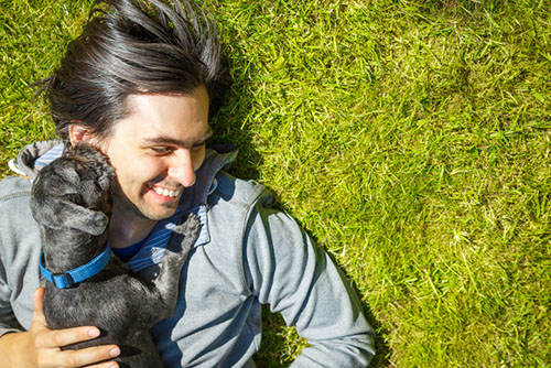 Friendliness in Dogs May be Linked to Two Genes