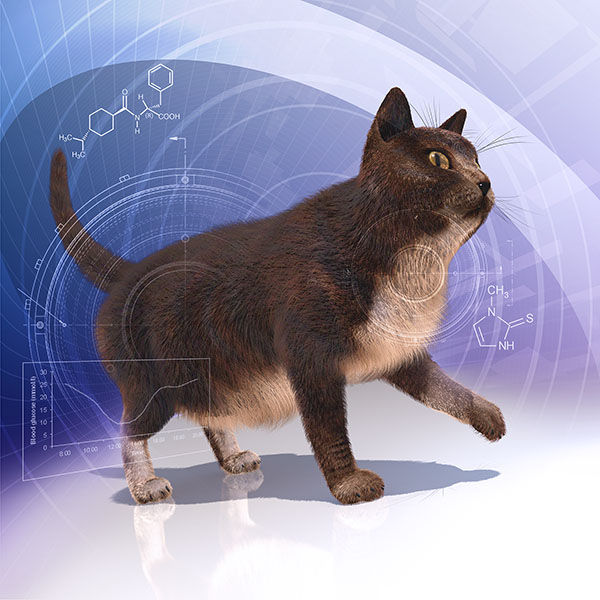 Images - Veterinary Manual